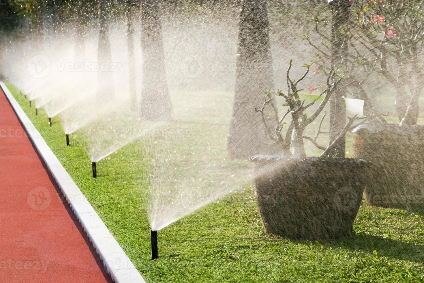 Row of sprinkler heads watering the grass photo