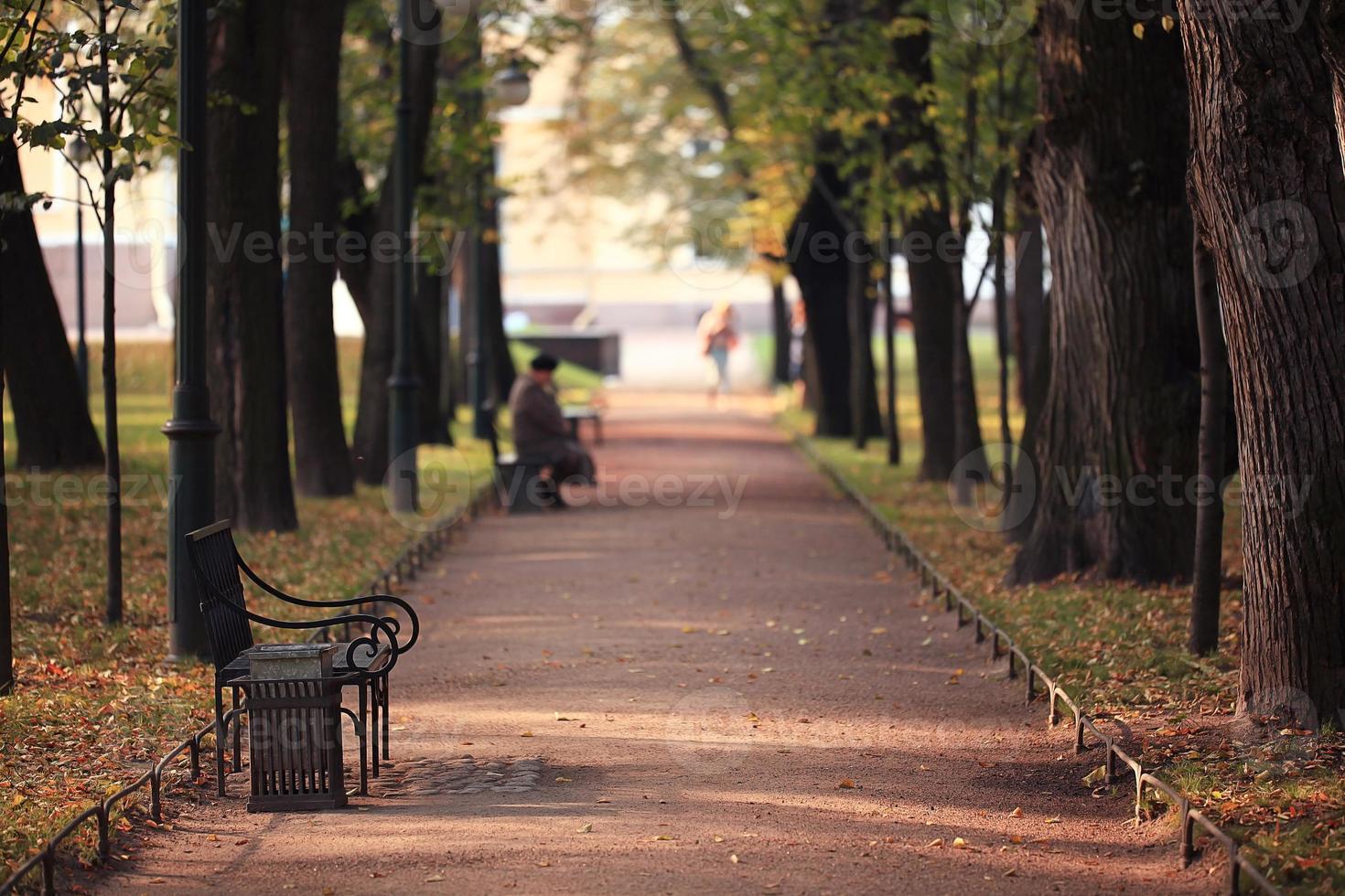 garden bench in autumn park landscape photo