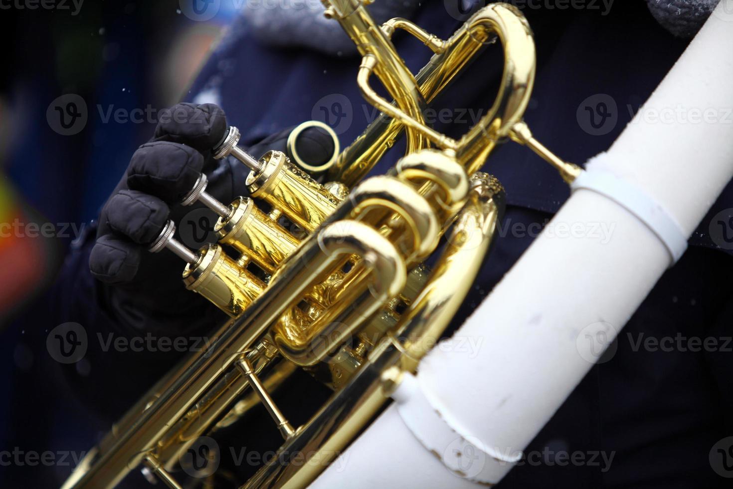 Winter horn photo