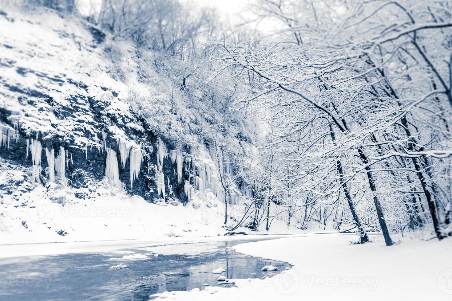 Escena de invierno cubierto de nieve. foto