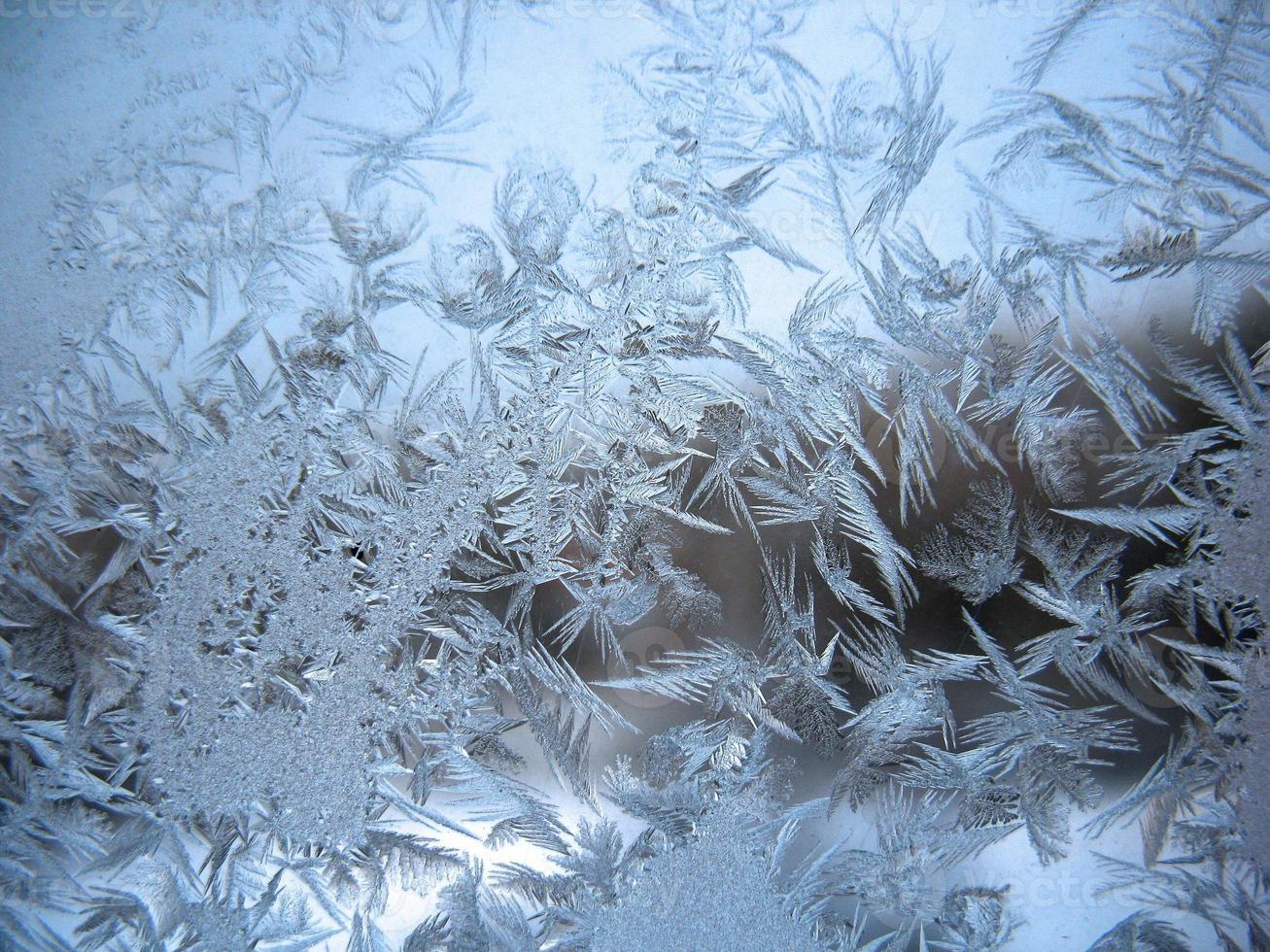 frozen winter window photo