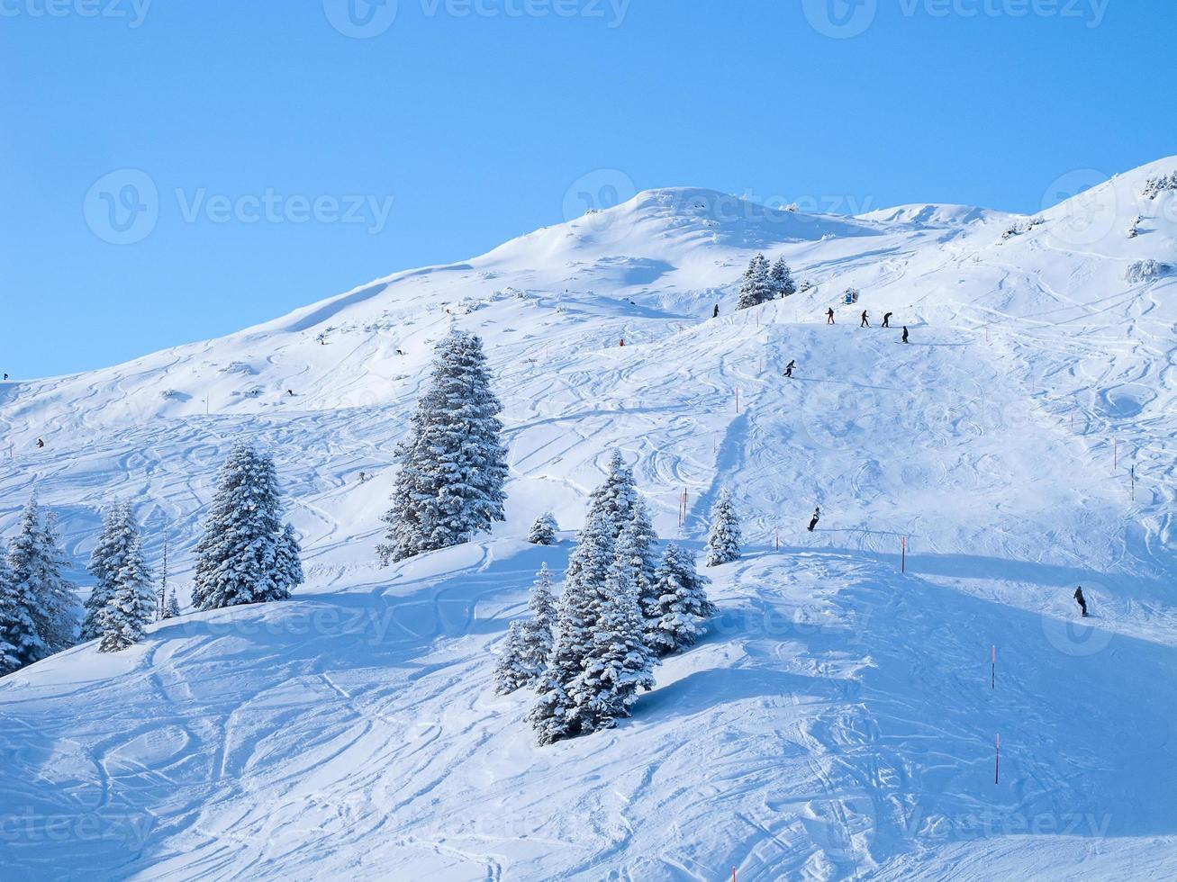Winter in alps photo