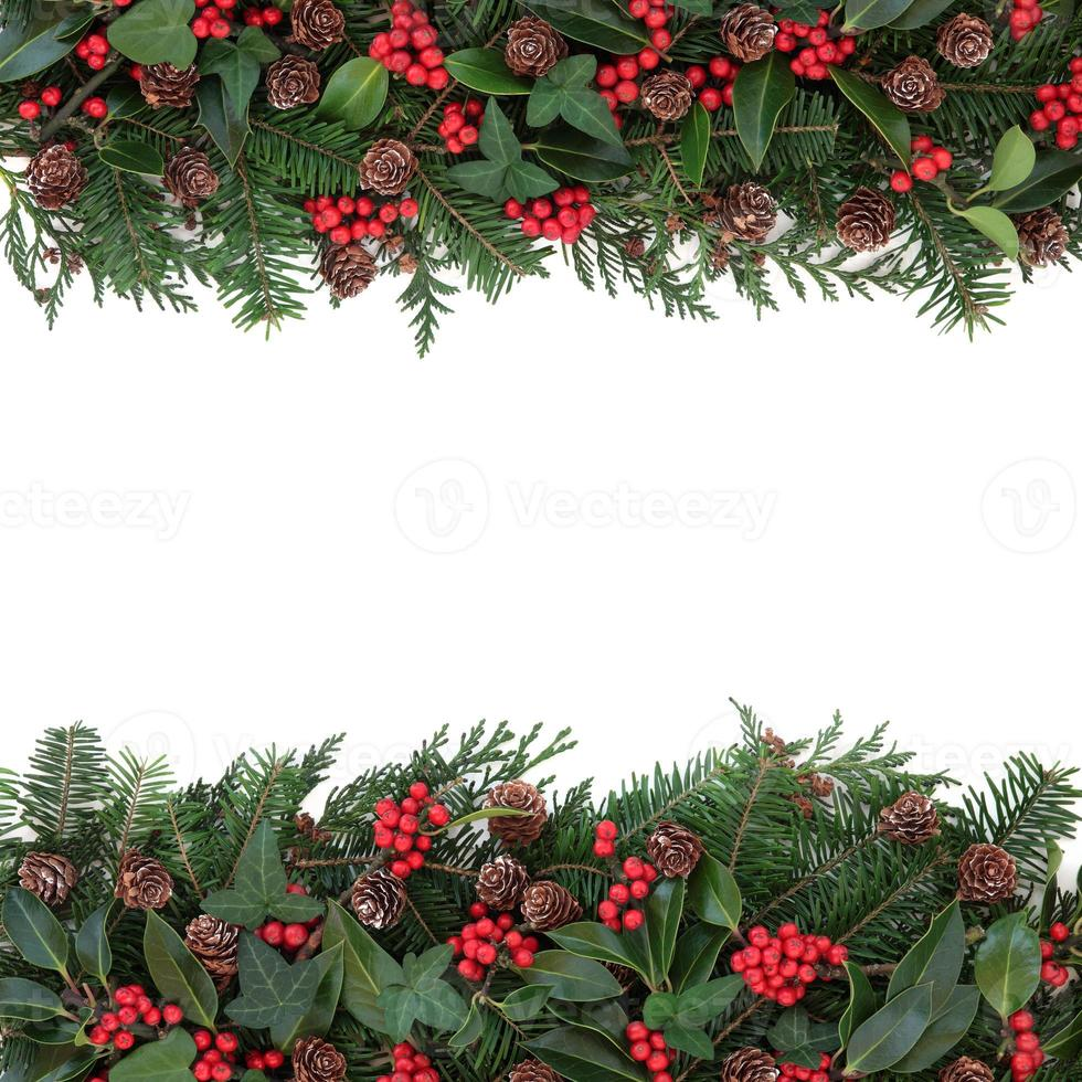 frontera floral de invierno foto