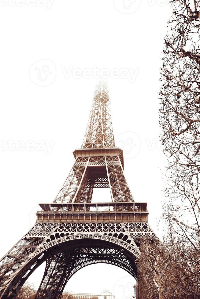 Eiffel Tower in winter photo