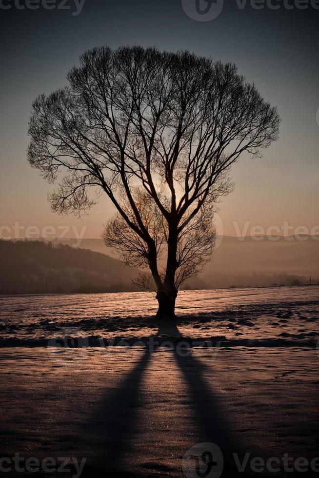 puesta de sol de invierno foto