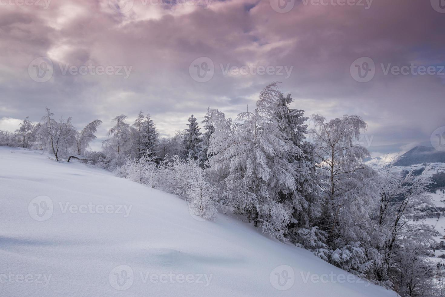 Winter scenery in the mountains photo