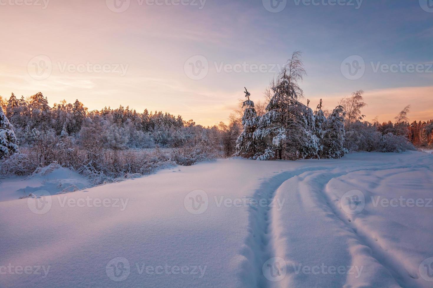 Beautiful winter sunset photo