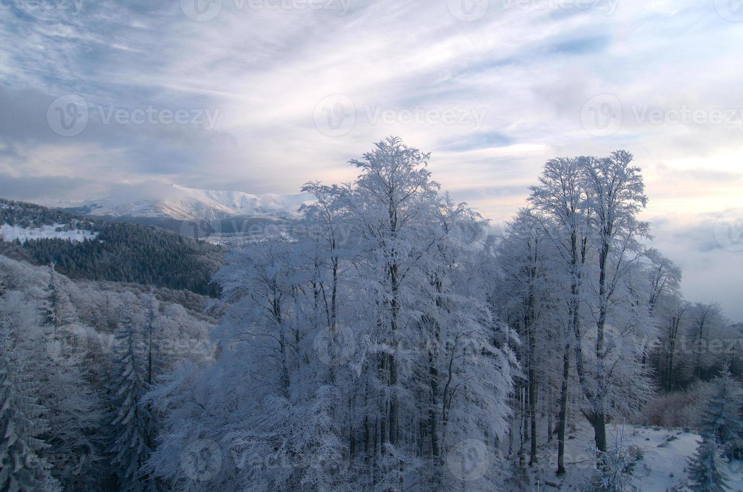 paisaje de montaña en invierno foto