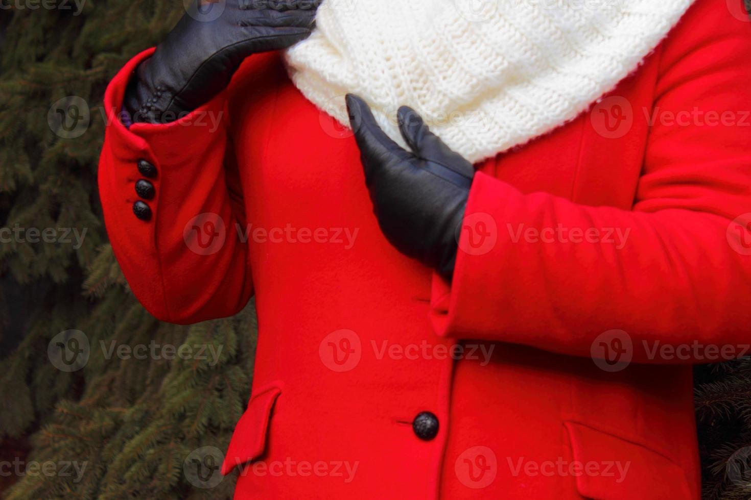 Women's top winter clothing photo