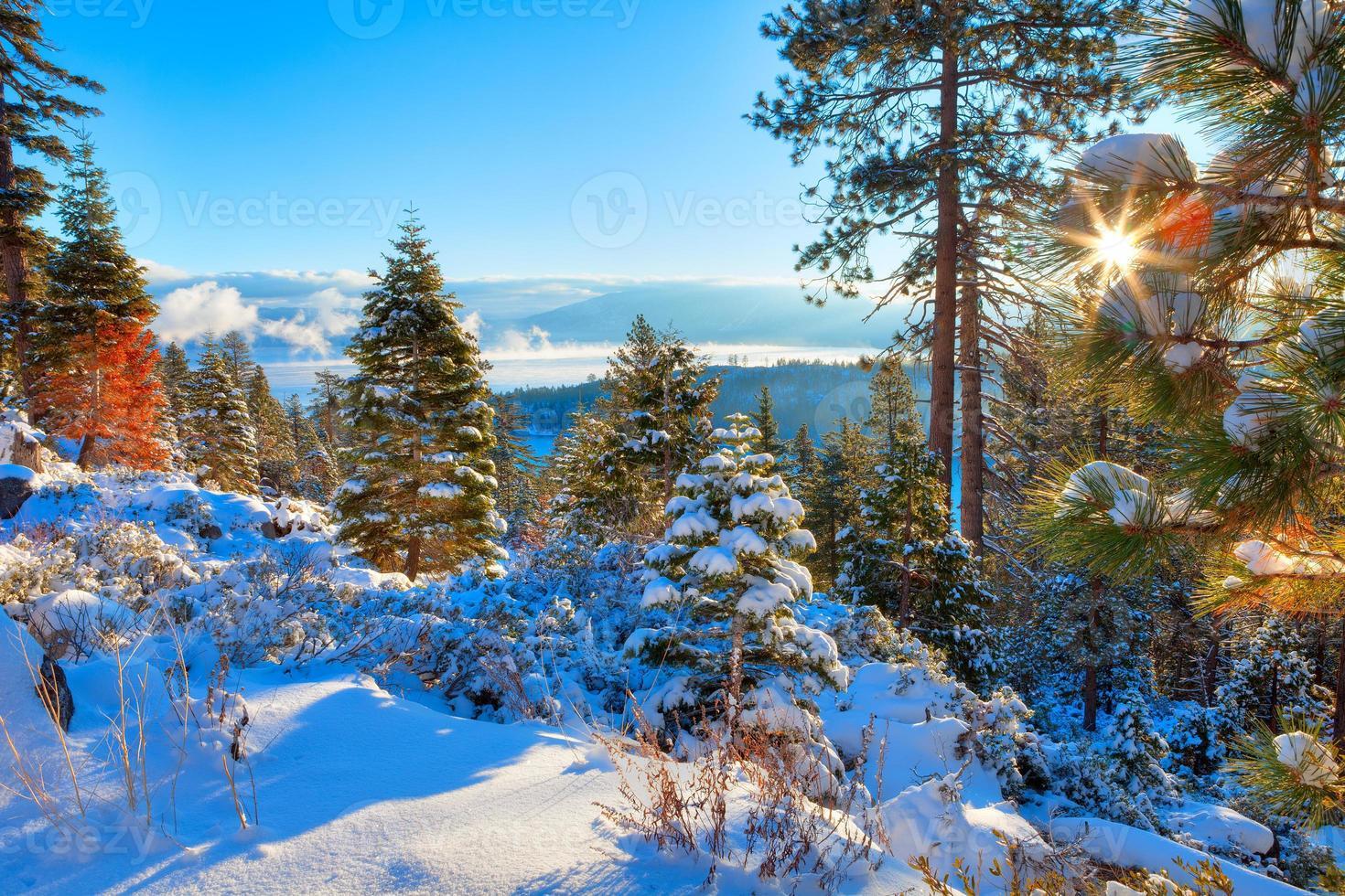 Lake Tahoe photo