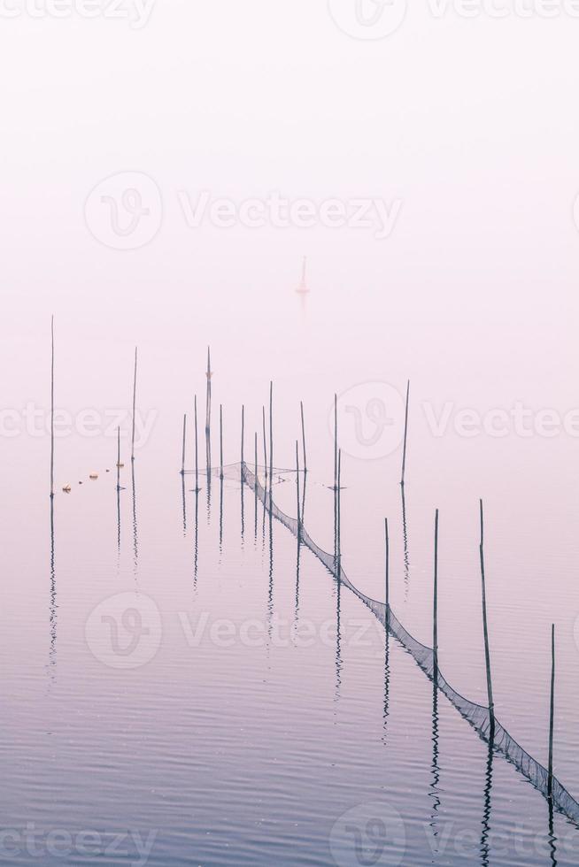 lake bank photo
