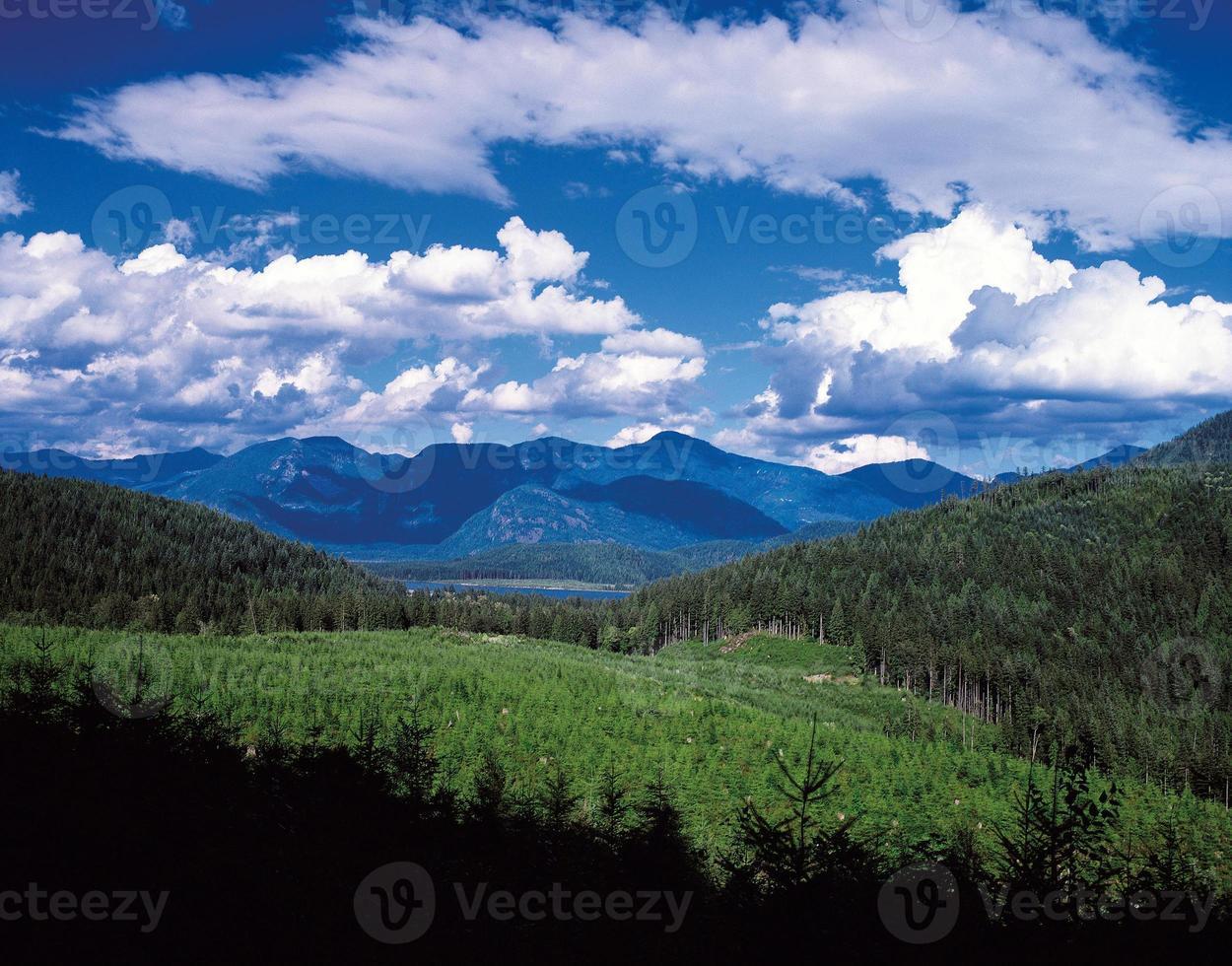 Stave Lake photo