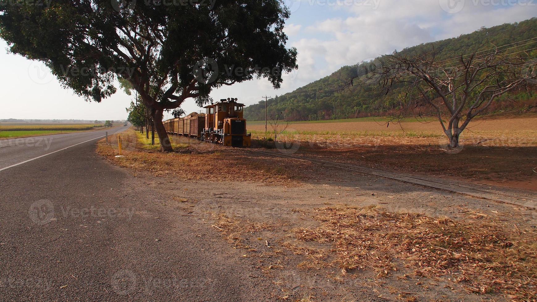 Sugar Cane Train photo