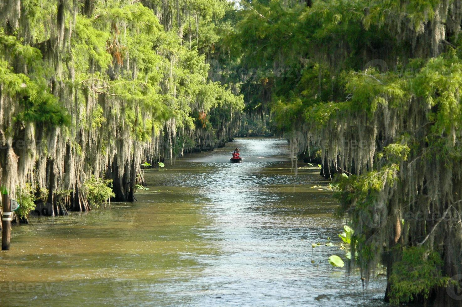 Jet-skiing in swamp photo