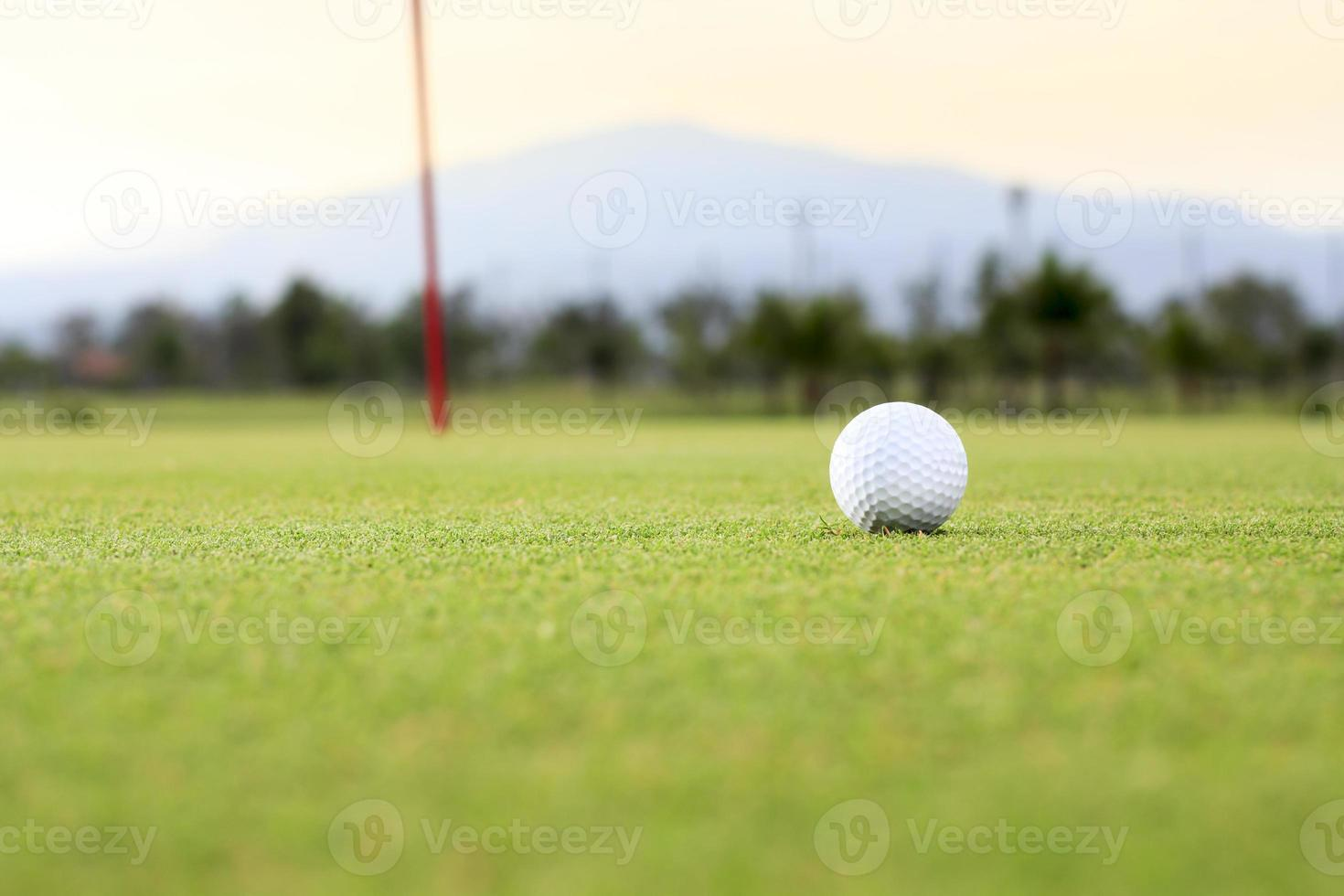 pelota de golf en campo verde foto