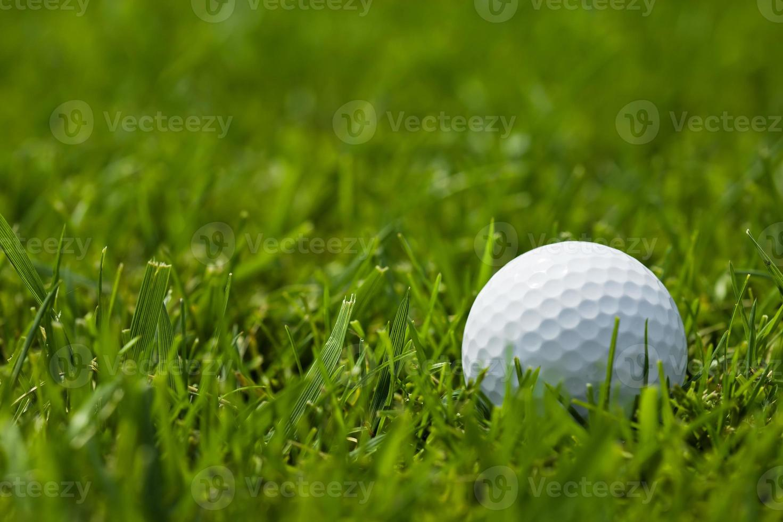 pelota de golf blanca en calle cerrar foto
