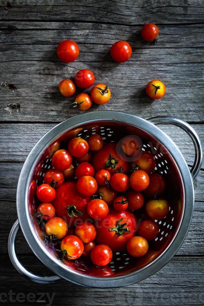 Tomatoes photo