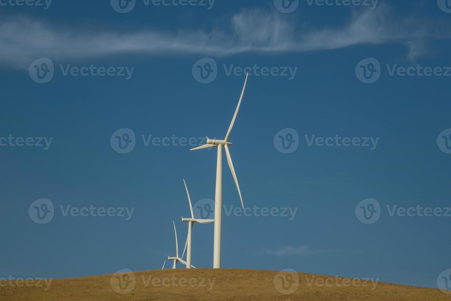 turbinas en parque eólico foto