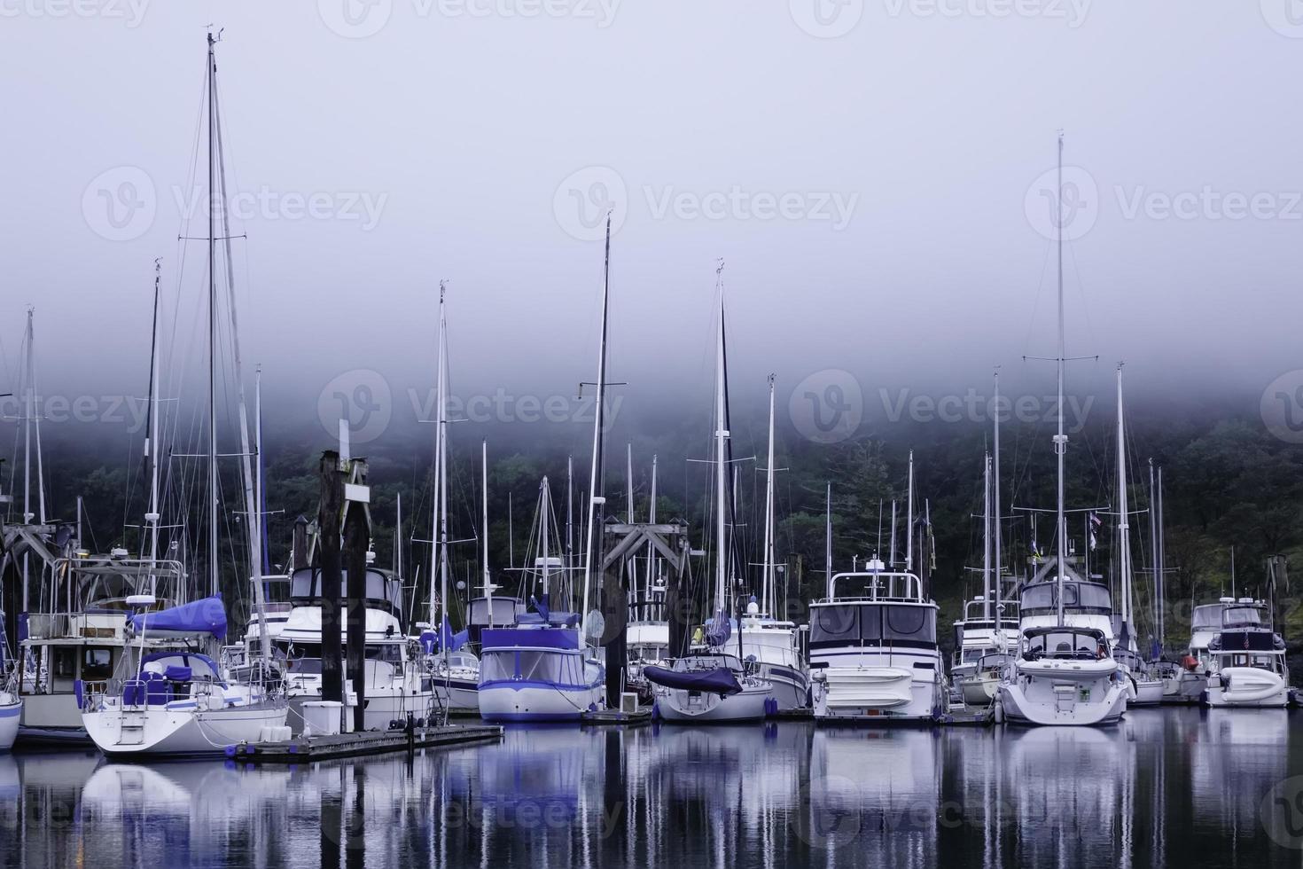 puerto deportivo brumoso foto