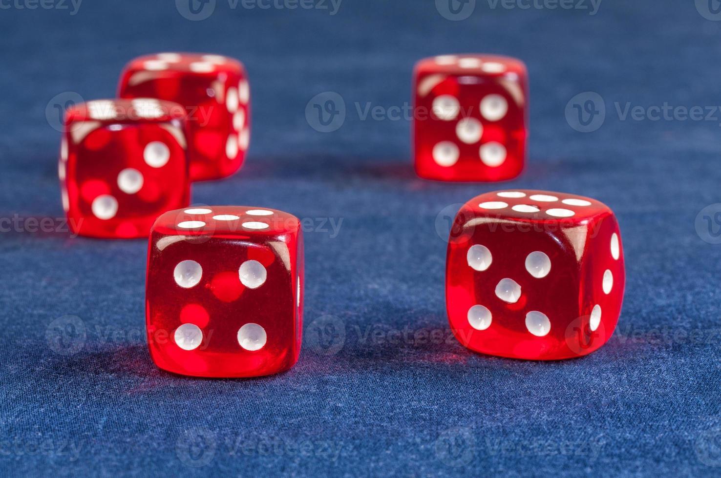 dice game photo