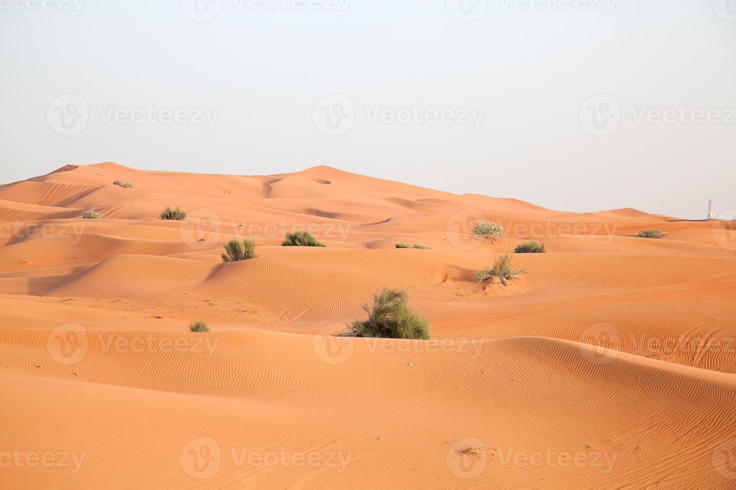 Red sand desert photo