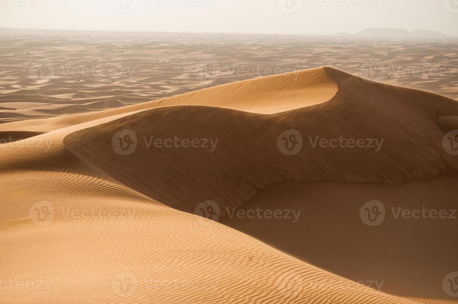 dunas en el desierto foto