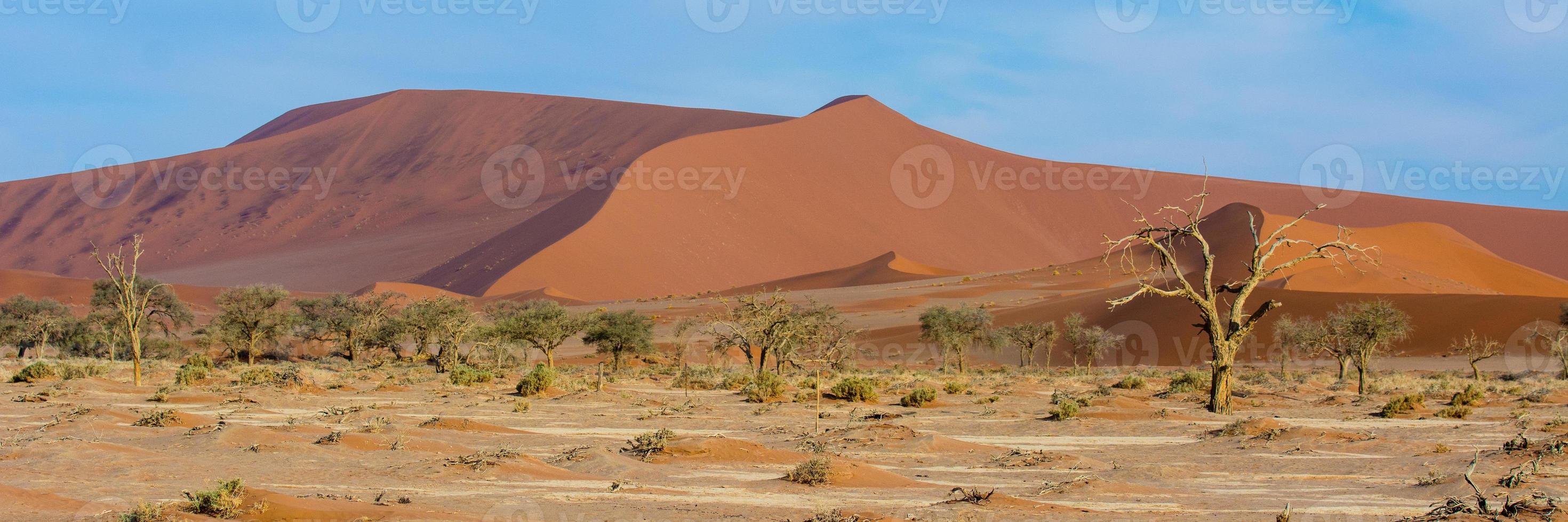 Red desert dunes photo