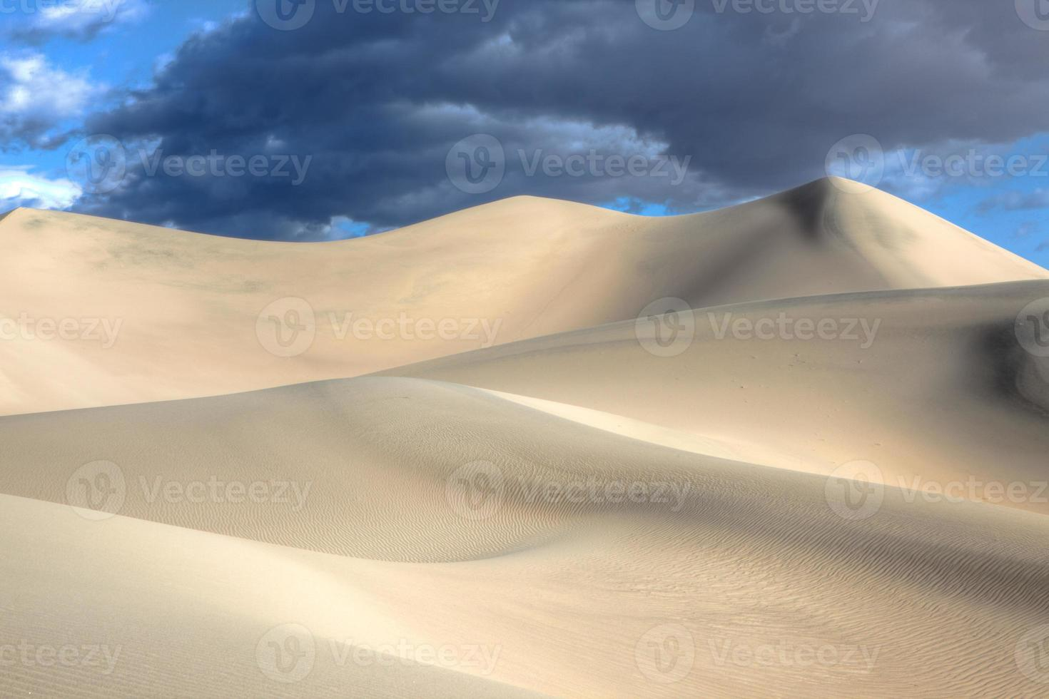 dunas de arena de mezquite foto