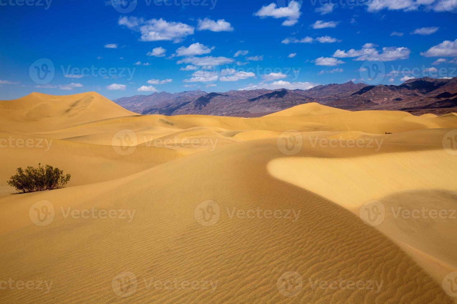desierto de dunas de mezquite en el parque nacional de death valley foto