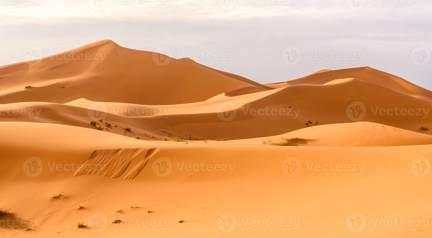 Erg Chebbi sand dunes in the Moroccan desert photo