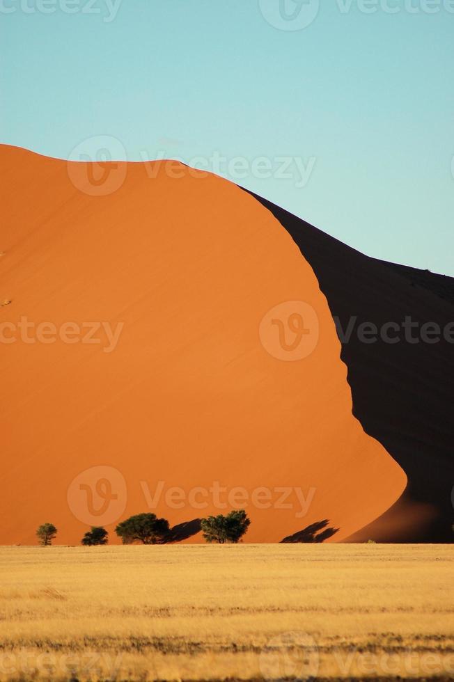 Duna en el desierto de Namib, Namibia foto