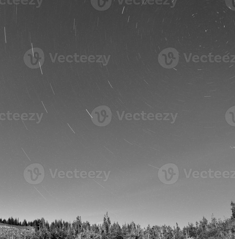 star tracks in the night sky in black and white photo