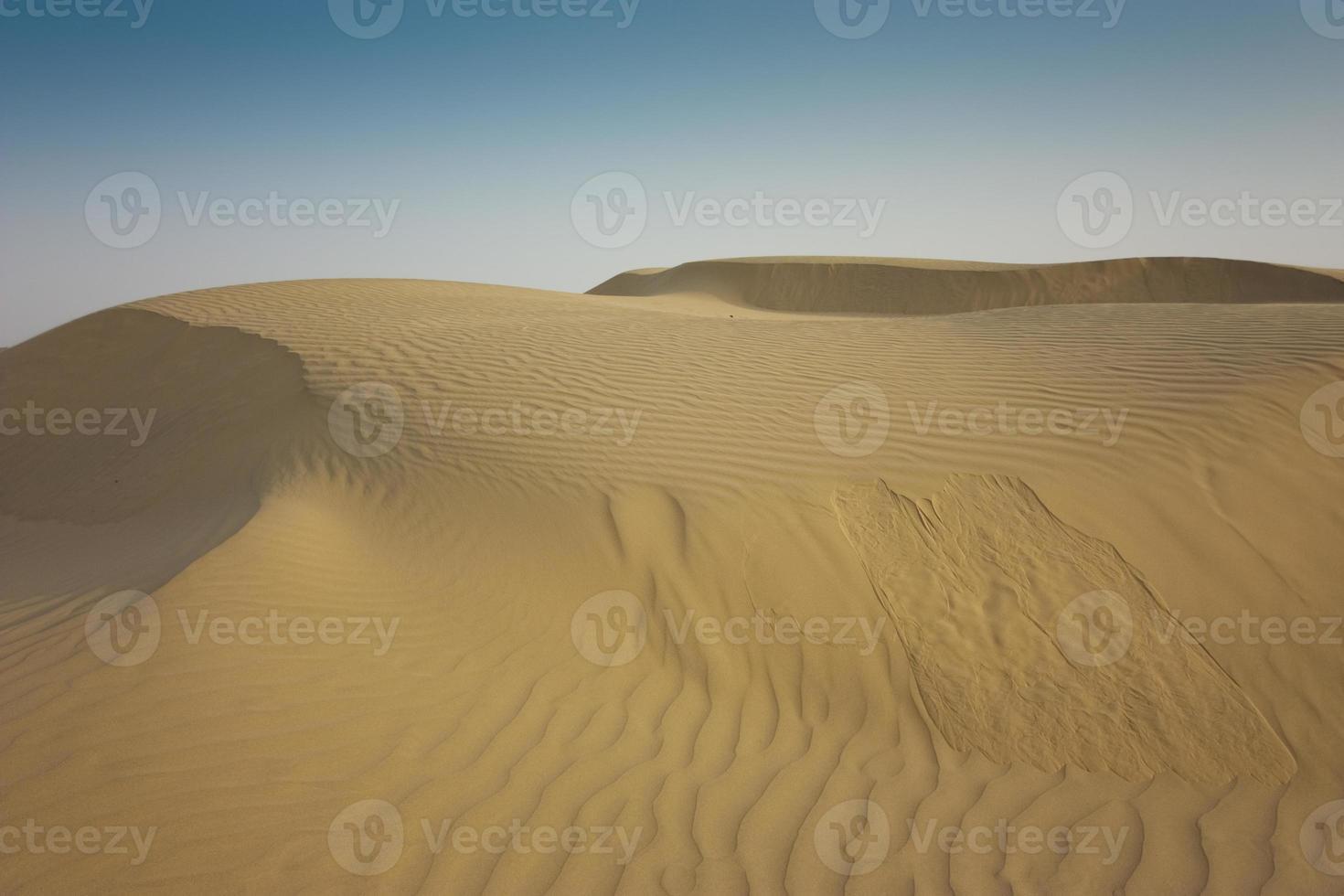 dunas de arena del desierto vacías foto