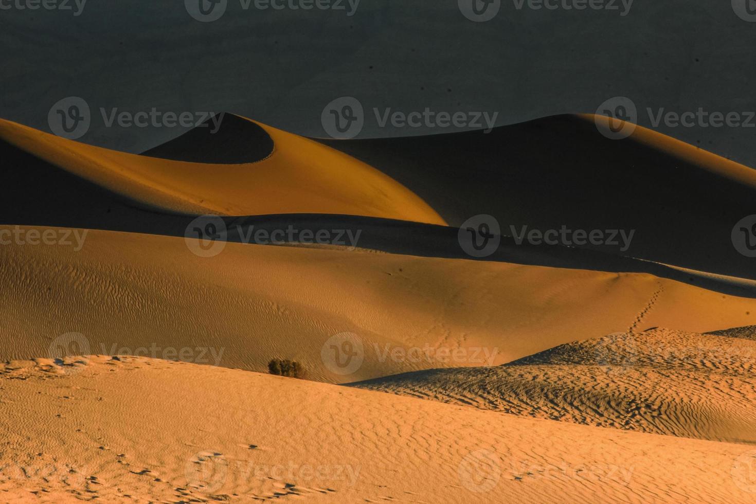 dunas de arena de mezquite mágico foto