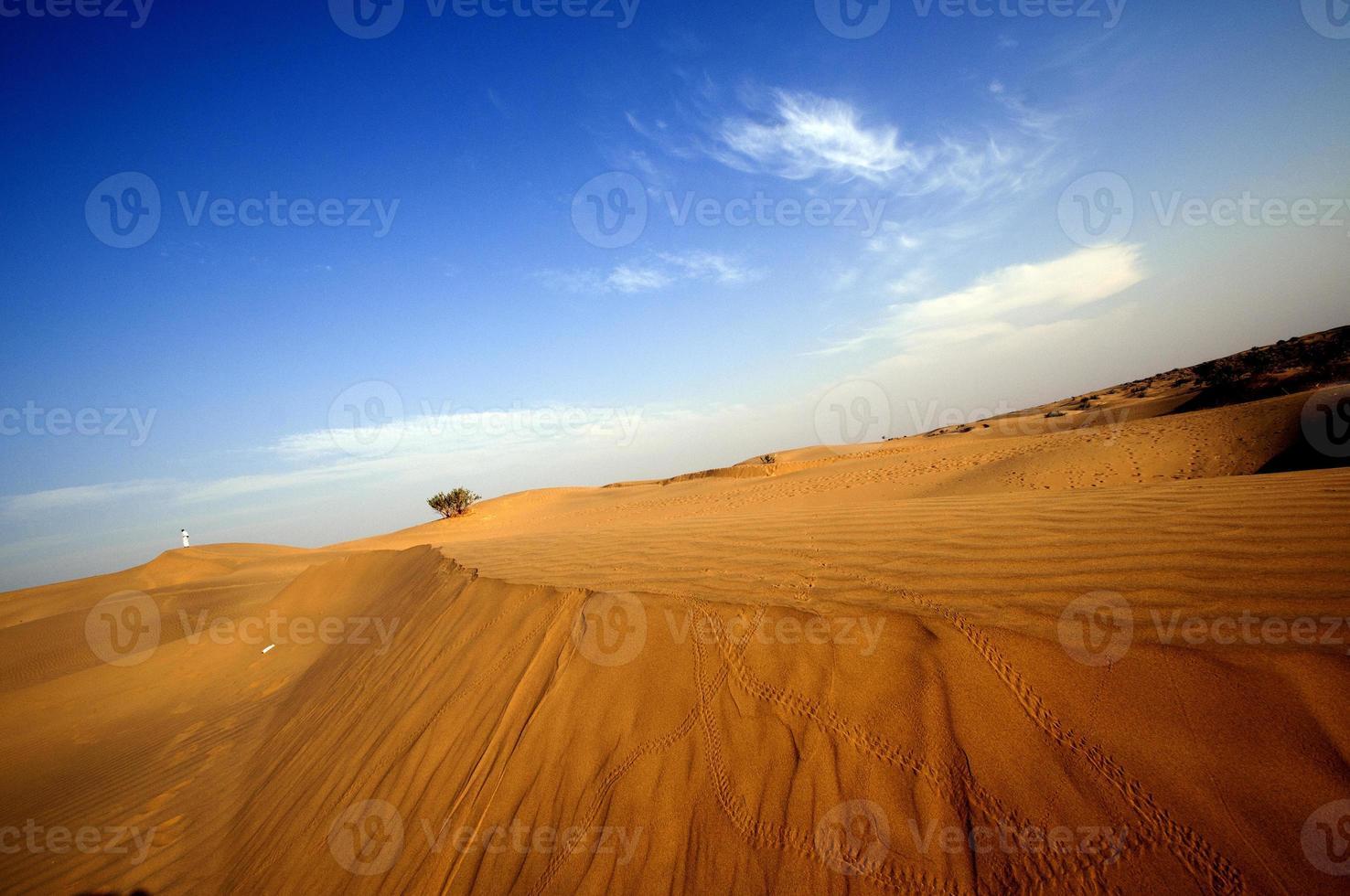 desierto, dunas de arena al atardecer foto