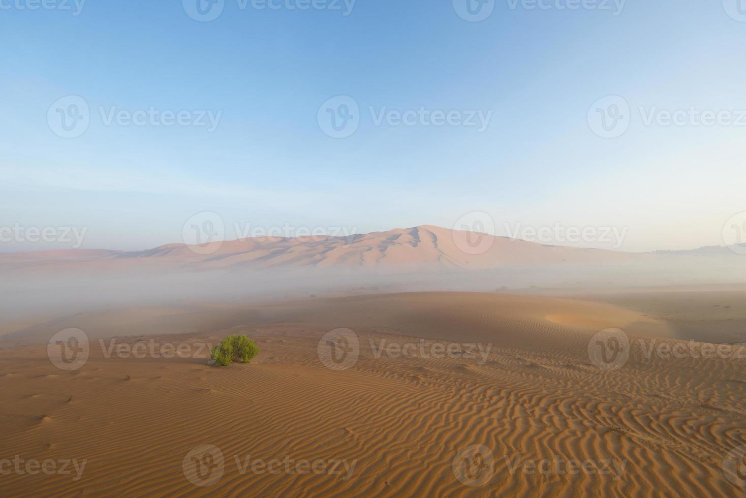 Sunrise in Arabian desert photo