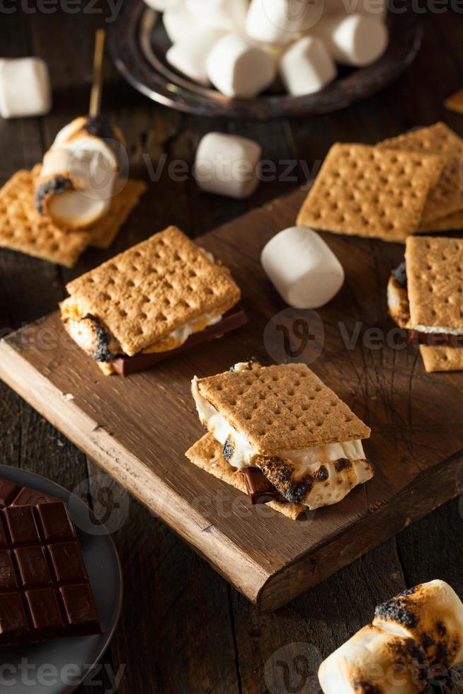 Homemade Gooey S'mores with Chocolate photo