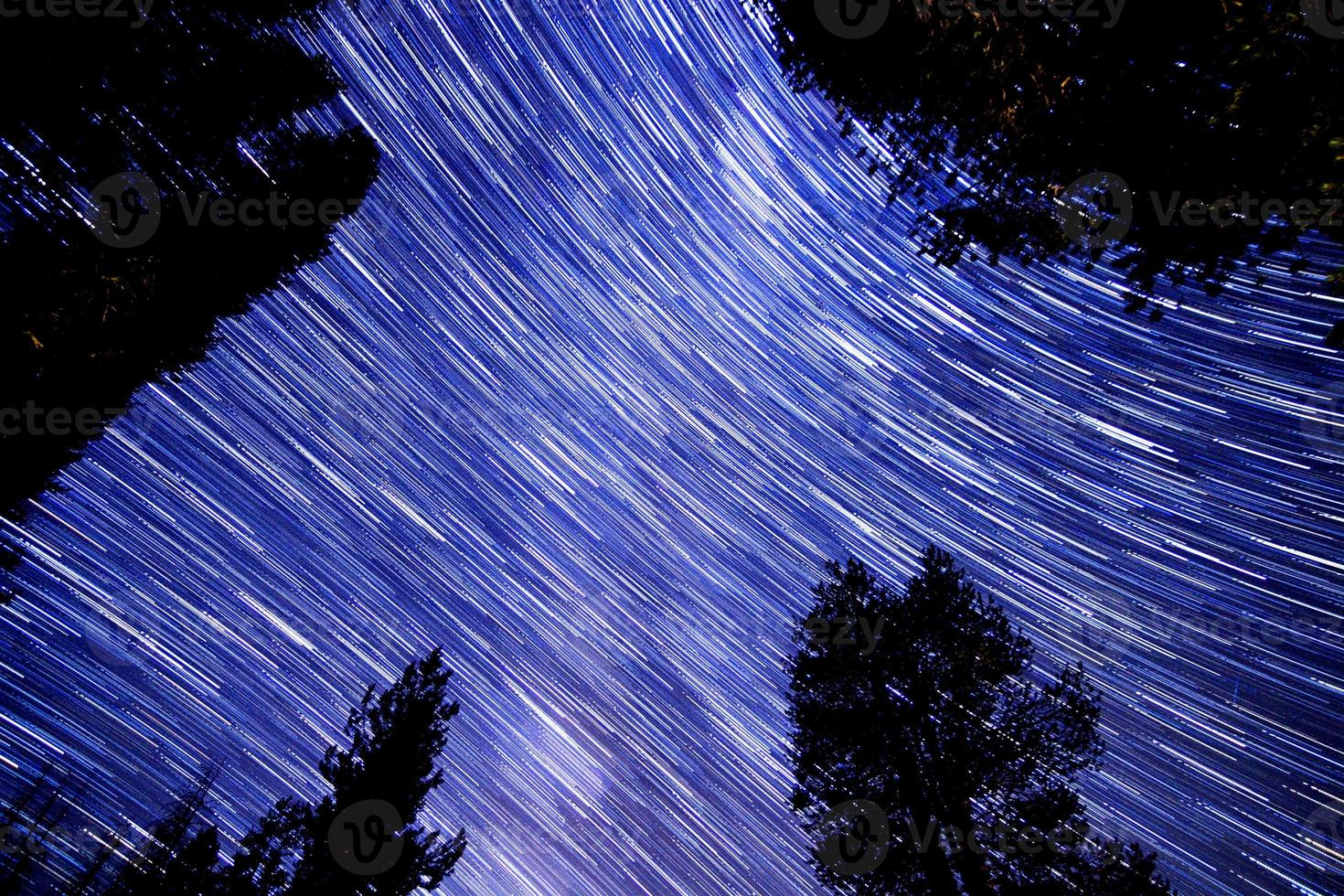 Star trails in Sequoia National Forest photo