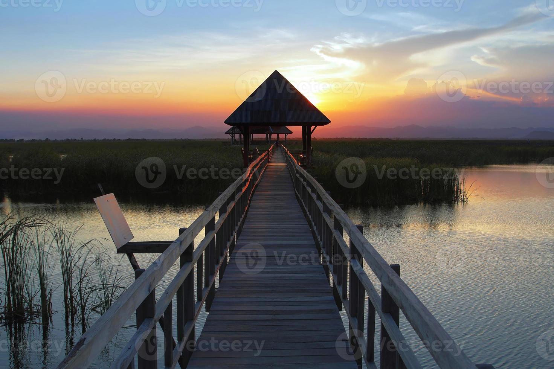 wooden bridge photo