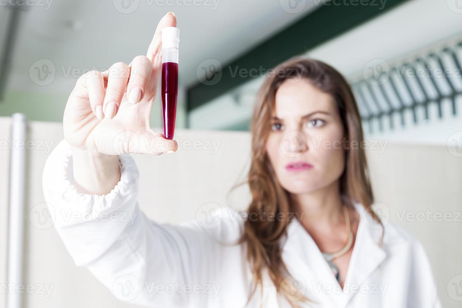 doctora examina el tubo de sangre en laboratorio foto