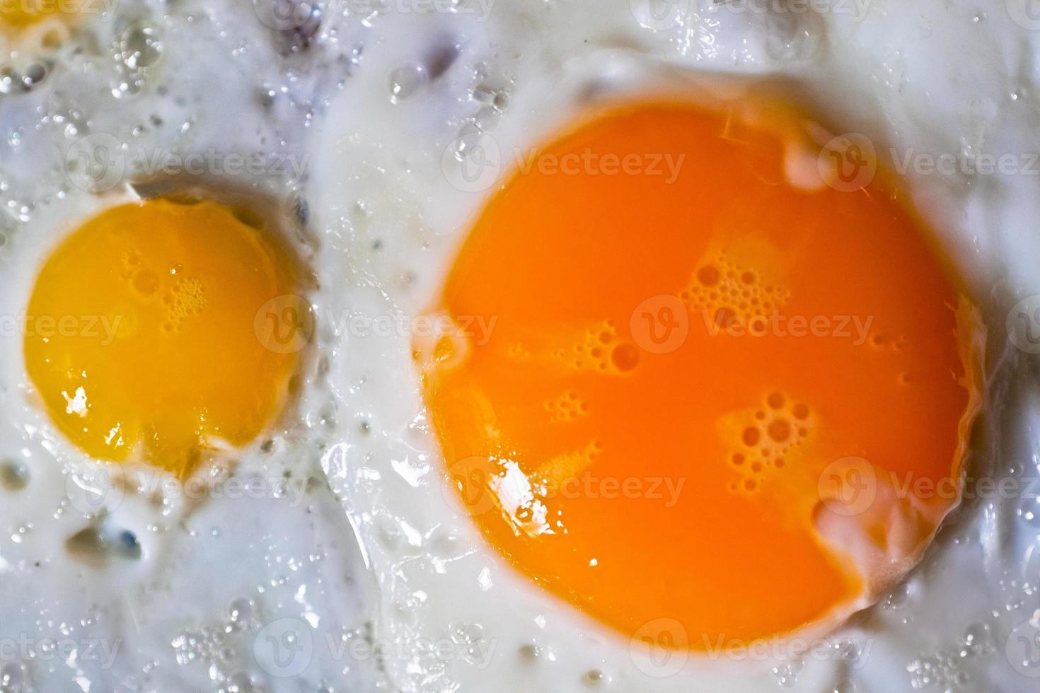 huevos fritos de codorniz y chickem foto