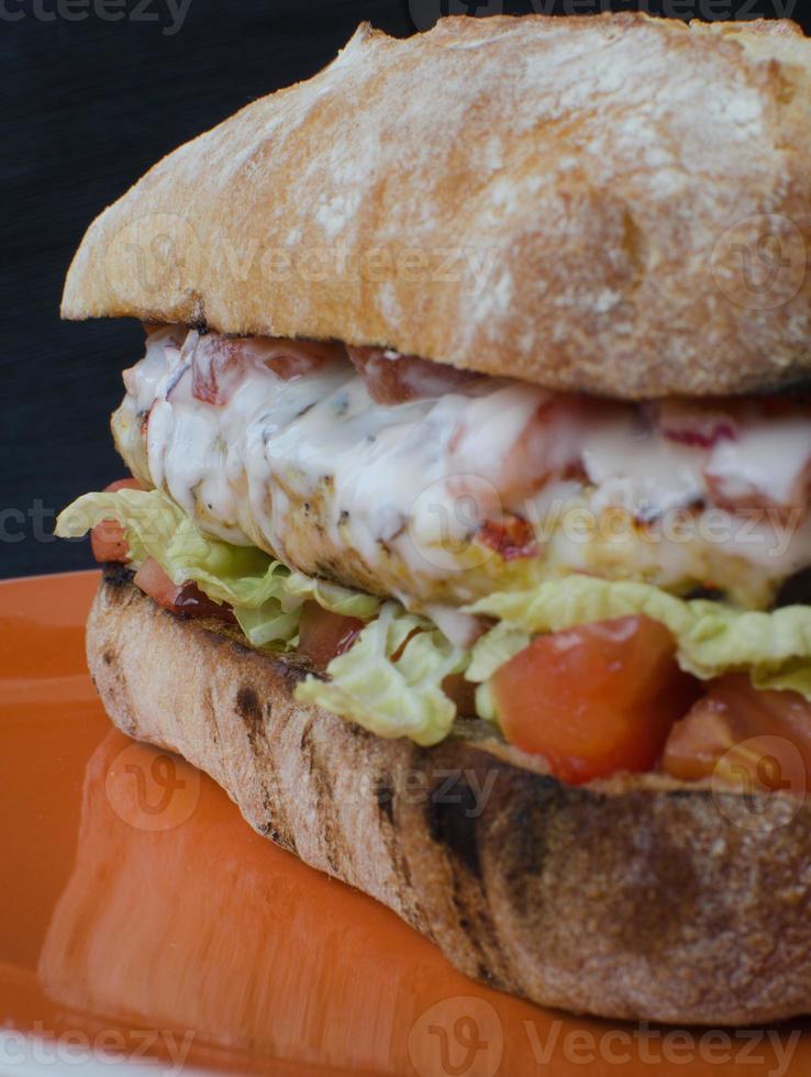 Italian chicken burger photo