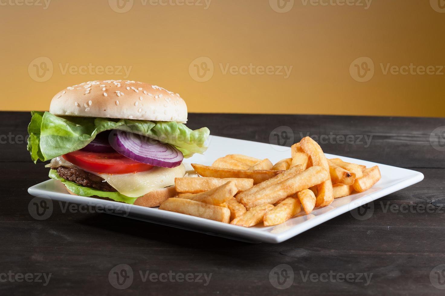 hamburger on plate photo