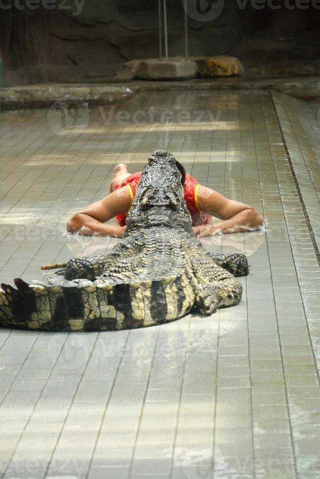 hombre con cabeza dentro de cocodrilo foto