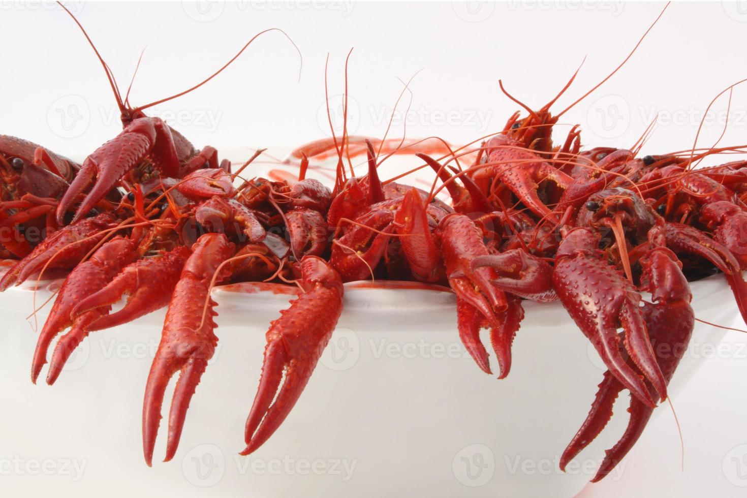 Crayfish cooked photo