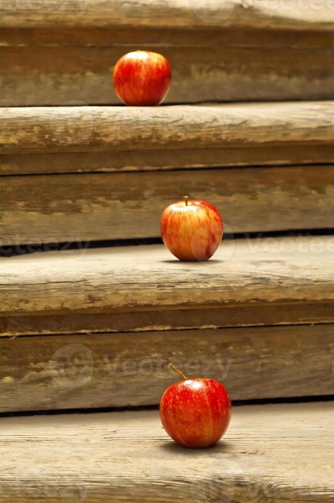 manzanas rojas del árbol foto