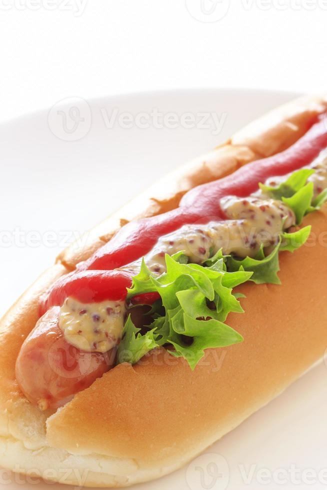 cachorro quente foto