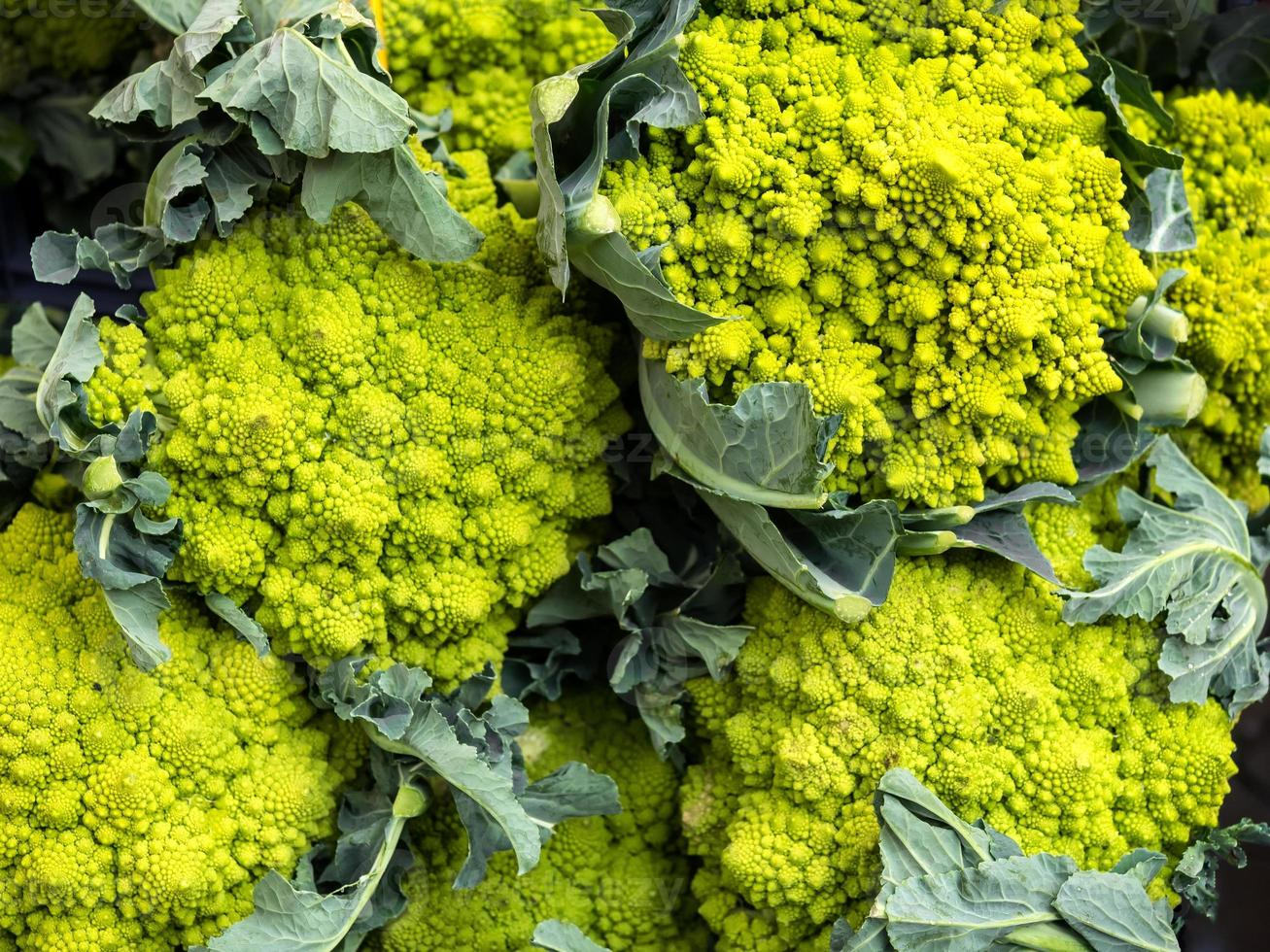 Calabrese green broccoli cabbage photo