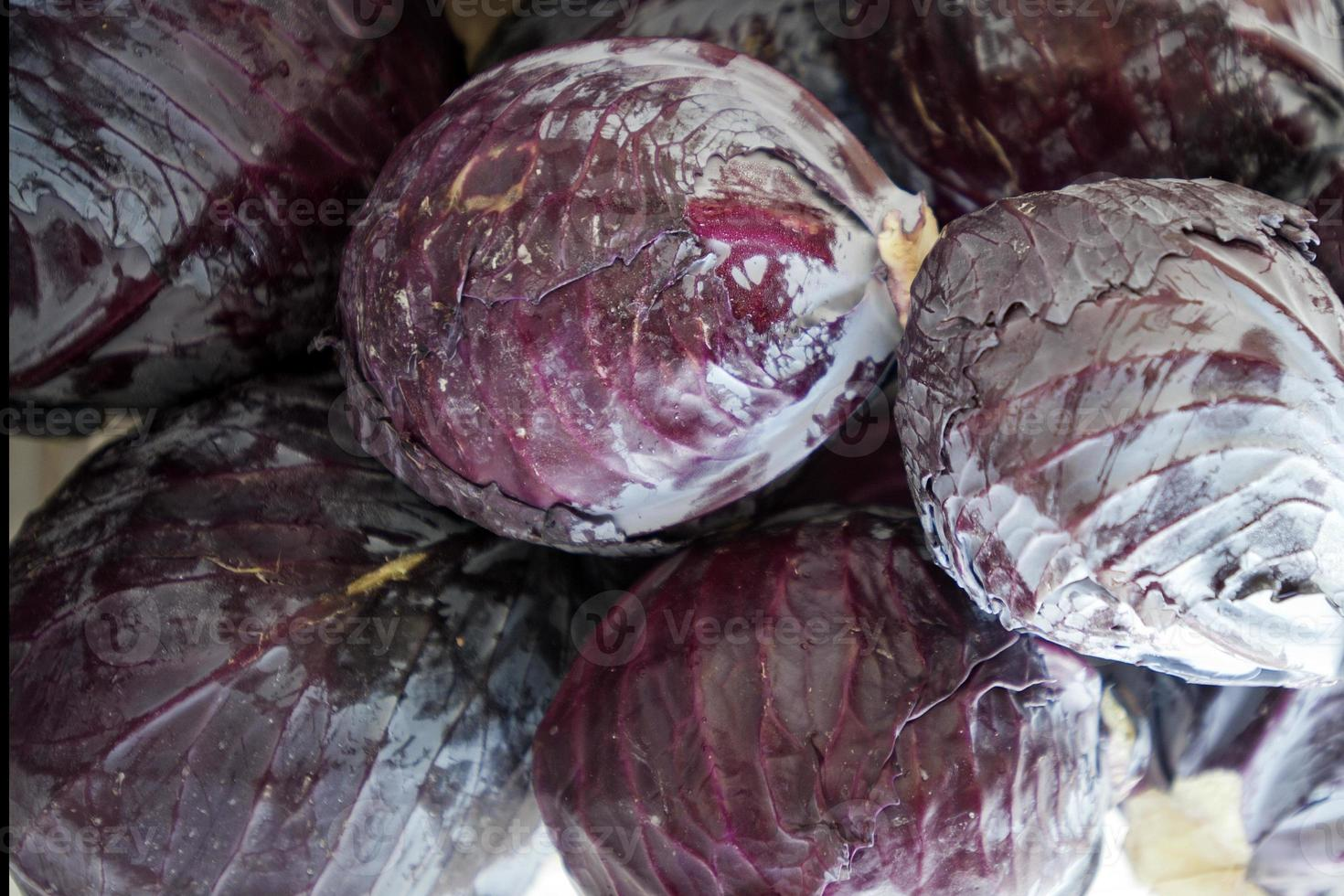 Red cabbages photo