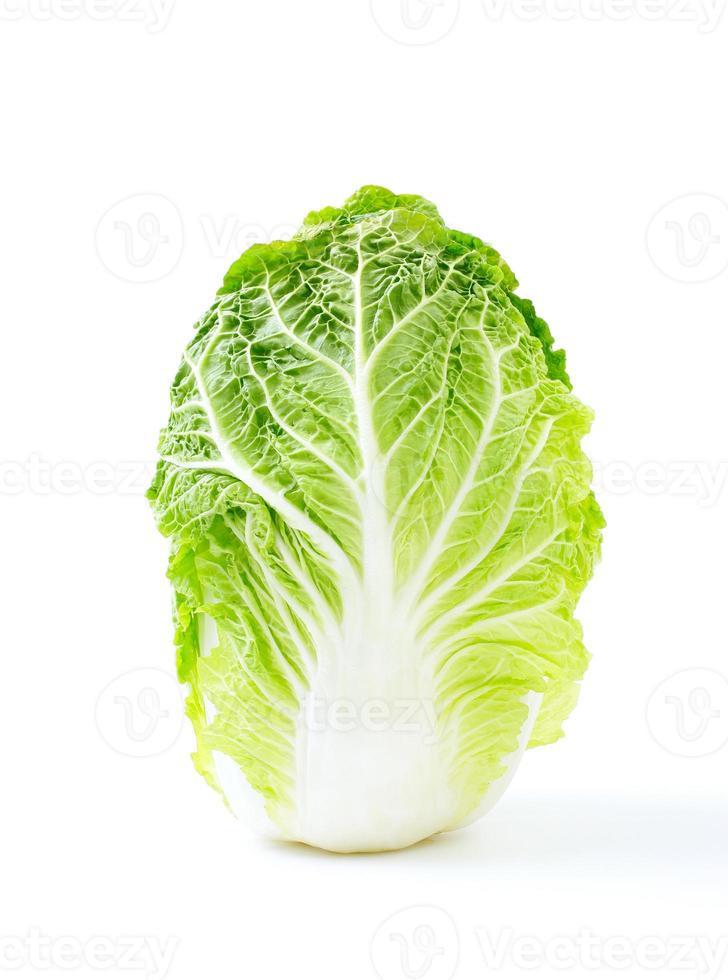 Chinese cabbage photo